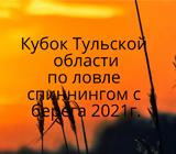 Кубок Тульской области 2021